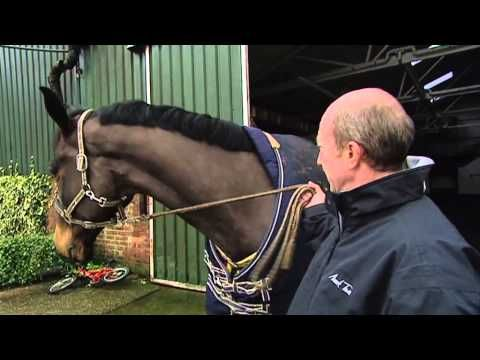 ▶ Showjumping - Michael Whitaker At Home - February 2010 - YouTube