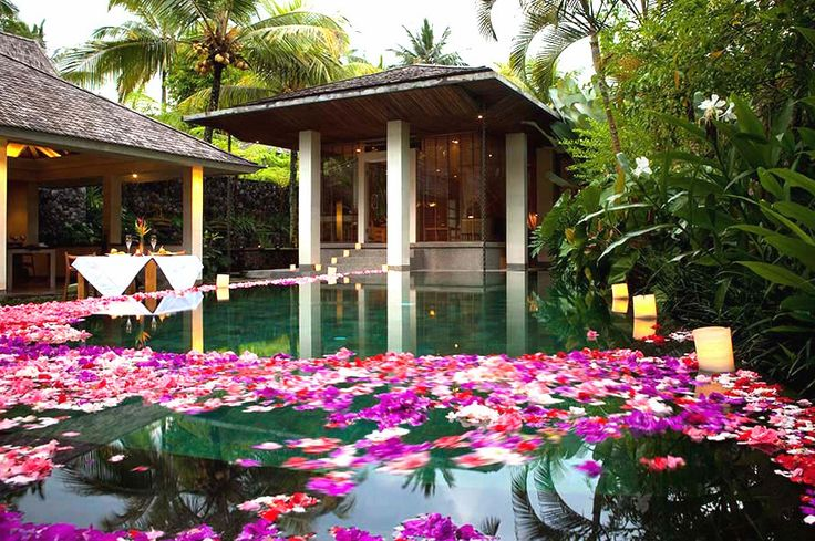 Stay longer and choose your dream Bali packages - Get best suited package at Chapung Se Bali Resort and Spa. We offer customized Bali Tour & Family Packages.
