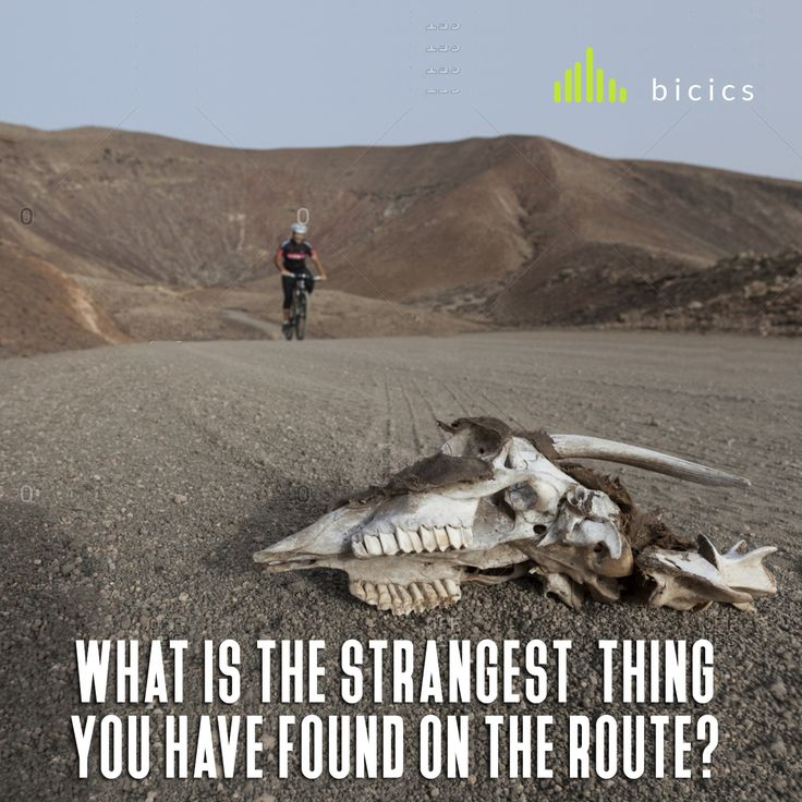 What is the strangest thing  you have found on the  route ? Bones, money, goats, cows ... when doing mountain bike or downhill there are always surprises #downhill #mountainbike #route #cycling
