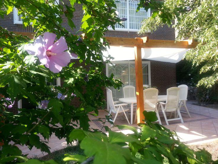Ideas de paisajismo de jardin porche estilo for Ideas paisajismo jardines