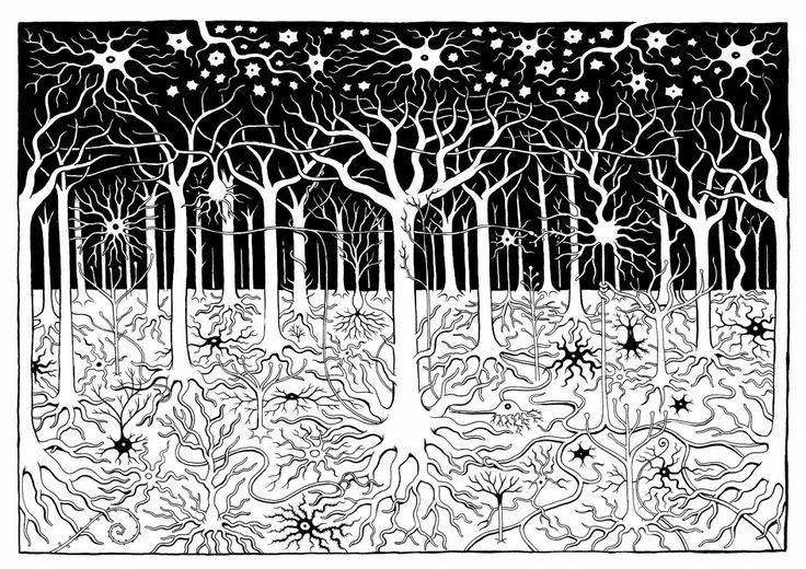 Neuron Forest