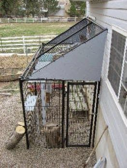 Tips for cat-hunters: How to make a cattery with a small patio?