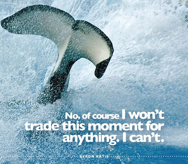No, of course I won't trade this moment for anything. I can't.  —Byron Katie