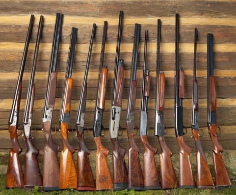 Ten best shotguns made in America. For down the road when I become a hunter