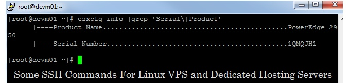 SSH Secure Shell Commands For Linux: This KB Talks About SSH Commands That Are Used For Monitoring Linux VPS Hosting Servers, Dedicated Servers and etc.