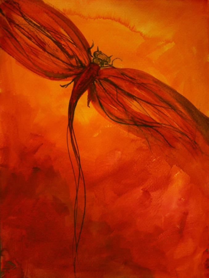 Red Dragonfly 2 Fine Art Print