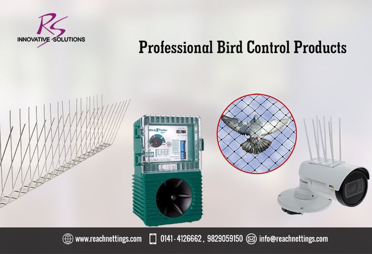 """Have a problem but not sure what products to buy? Check out our ready to go """"Bird Control Solutions"""" which have everything you need! #birdcontrolsolutions #pigeonrepellent #KeepPigeonsAway"""