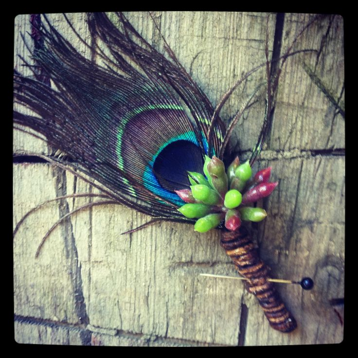 Peacock feather & succulent Grooms Buttonhole- Created By Flowers By The Vase