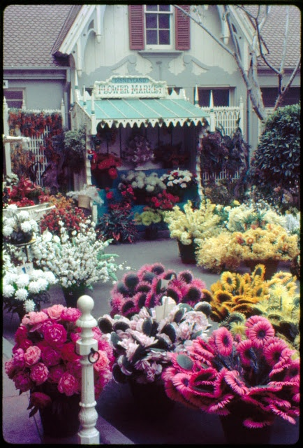 Disneyland ~ Flower Market, December 1962