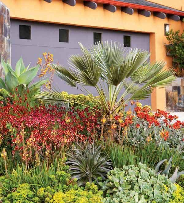 Your guide to water-wise gardening from Sunset Plants. With summer in full swing, here are some tips to conserve water in the garden, yet keep your plants looking great. Irrigation Methods, Sprinkler Irrigation, Garden Care, Garden Tips, Garden Ideas, Ways To Save Water, Drought Tolerant Landscape, Lawn Sprinklers, Water Wise