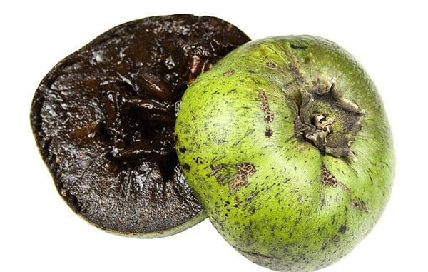 schwarze sapote die schokoladenpudding frucht pflanzen. Black Bedroom Furniture Sets. Home Design Ideas
