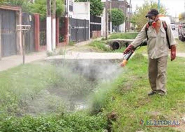 Mal de dengue en argentina.
