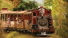 Puffing Billy Steam Railway, Attraction, Yarra Valley & Dandenong Ranges, Victoria, Australia