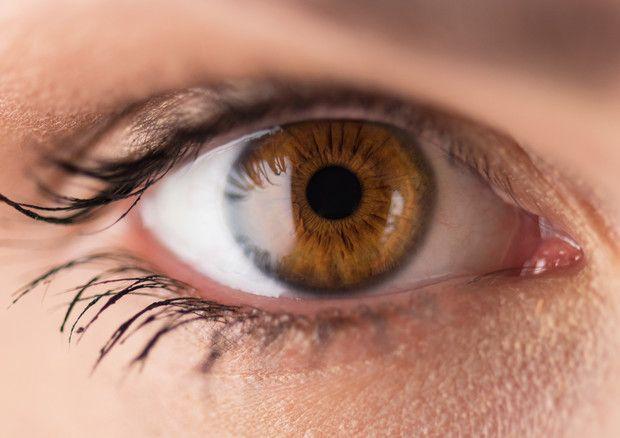 L'intelligenza si legge negli #occhi, in #grandezza pupille © Ansa