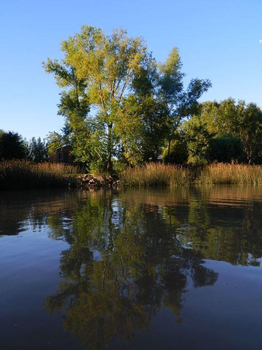 Carlos Joaquin Gonzalez:  Arroyo Espera. Quietas las aguas , los arboles se reflejan cual espejo admirando su fisonomía..
