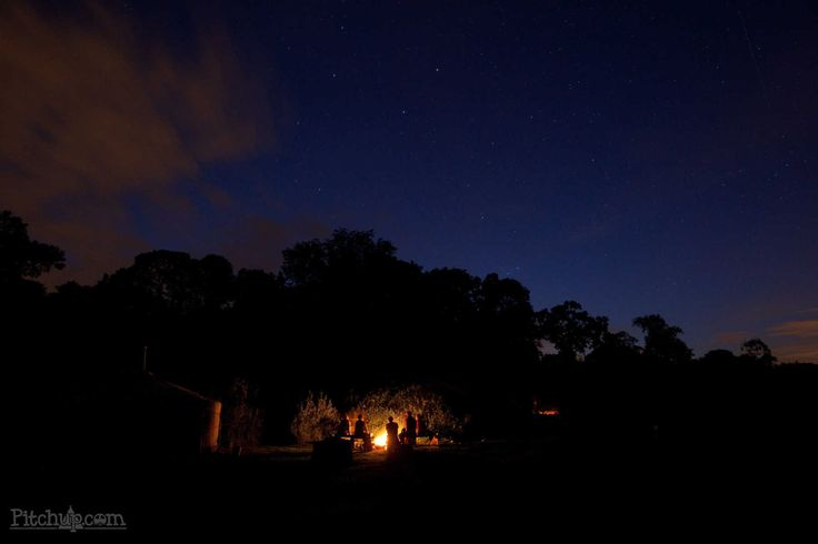 Blackdown Yurts, Cullompton, Devon - Pitchup.com