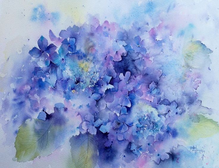 Rachel McNaughton   WATERCOLOR