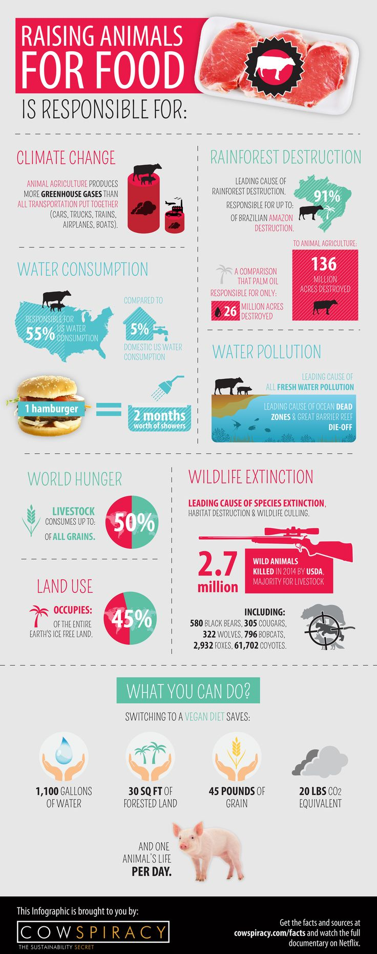 COWSPIRACY: The Sustainability Secret - be Vegan - earth day