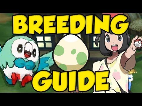 POKEMON SUN AND MOON BREEDING GUIDE! Best Pokemon Sun and Moon IVs and H...