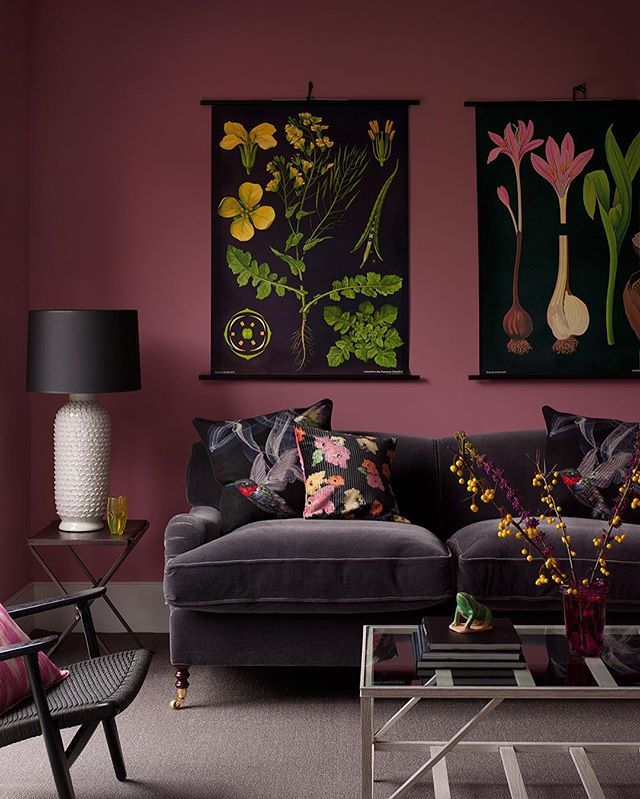 Cool cut cosy: smoky pink walls highlight dramatic vintage-style botanical prints, while vivid cushions lighten up a dark sofa. --- #livingroom #sittingroom #sofa #interior Styling Kate French, photographs Simon Bevan