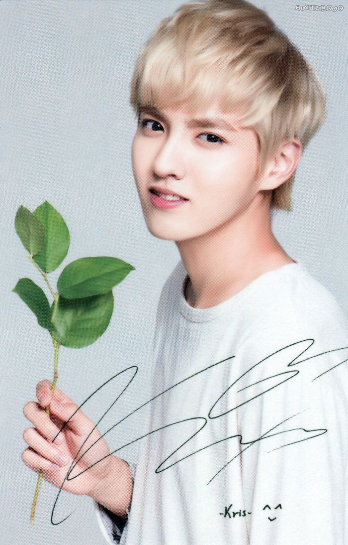 Kris oppa <3 The artist one......Picasso <3