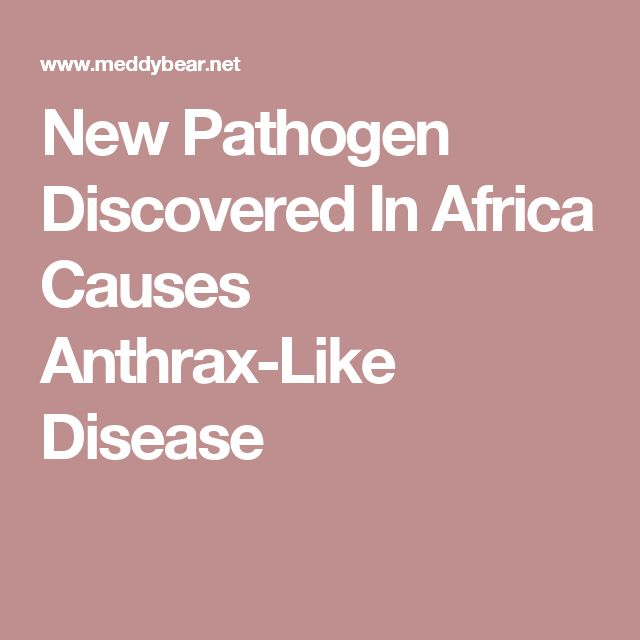 New Pathogen Discovered In Africa Causes Anthrax-Like Disease