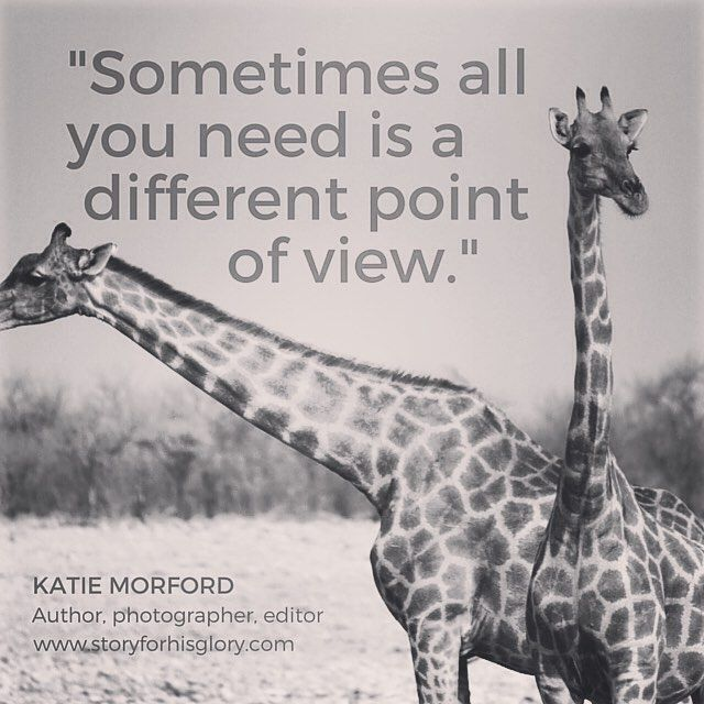 Ain't that the truth? Here's a happy giraffe photo for you because Fridays make…