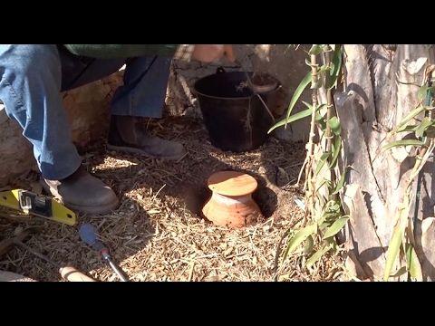 Δοκιμάστε ΑΥΤΟ το Αρχαίο Μυστικό ηλικίας 4.000 ετών και δεν θα ξανά Χρειαστεί να Ποτίσετε τα Φυτά σας φέτος το Καλοκαίρι! - OlaSimera