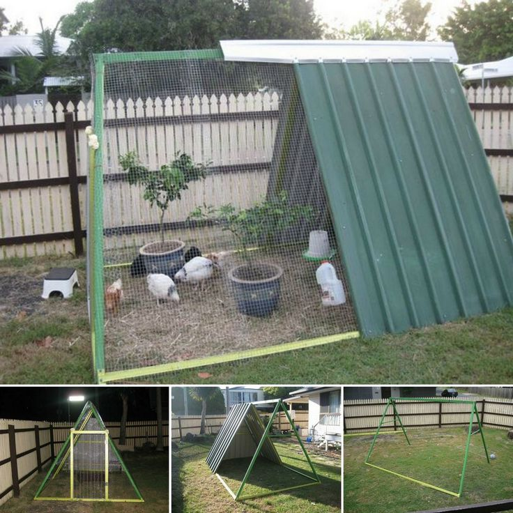 "Need a place to raise chickens? Why not repurpose an old swing set and turn it into a DIY chicken coop! Full album plus a link to the tutorial here: http://theownerbuildernetwork.co/04su Raising chickens has a lot of benefits. The most obvious is the fact that you get free eggs that are much healthier than ""store bought"". And if you're after the meat, you can be certain that what you serve to your family is fresh and safe. Chickens also make great pets :)"