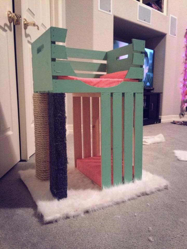 Cat Tree using 2 crates from a craft store! and like OMG! get some yourself some pawtastic adorable cat apparel!