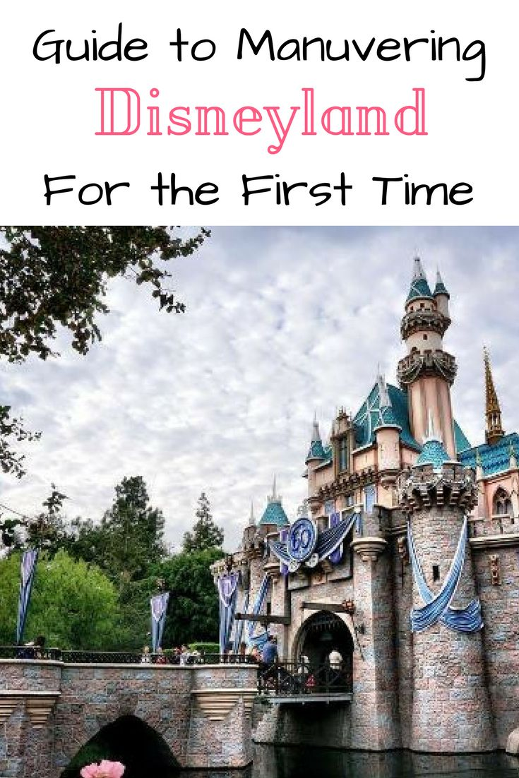 first trip to disneyland This has been a dream of ours since we started talking about our family ashley and i both love disneyland so much there are so many fond memories there for both us.