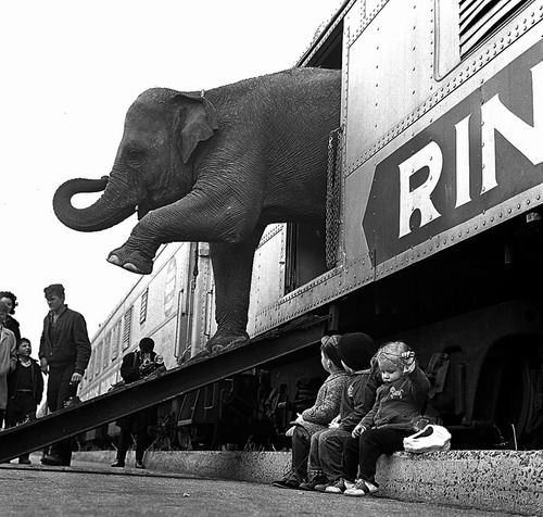 Getting out of a #train: Bronx #NewYork 1963   Photo: Paul Rice | #vintage