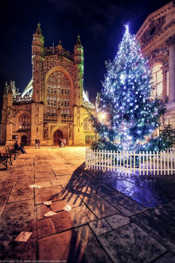 Bath Abbey Christmas Tree - Bath, Somerset, England