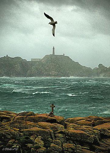 Volando sobre el mar...