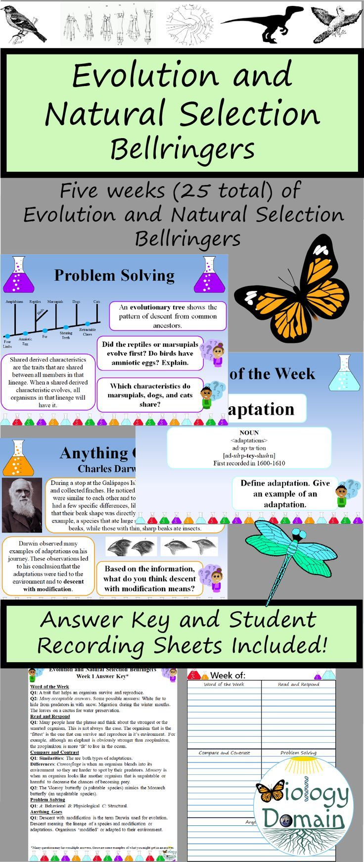 Darwin S Theory Of Evolution Worksheet Chapter 15 Theory Of