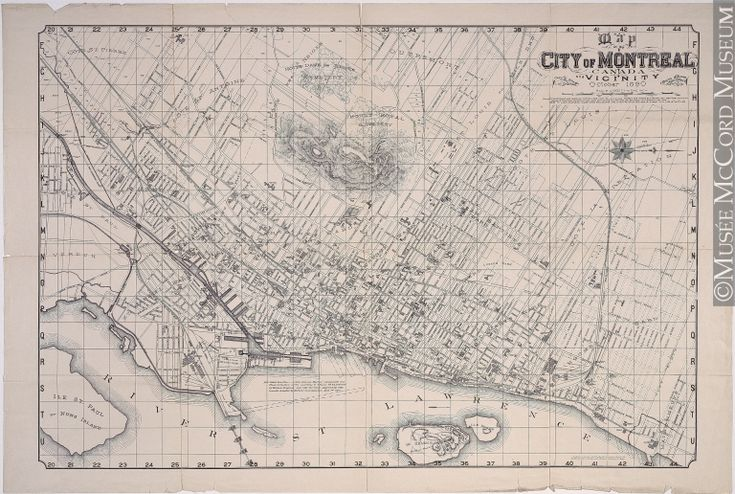 Map of the City of Montreal Canada and Vicinity 1890