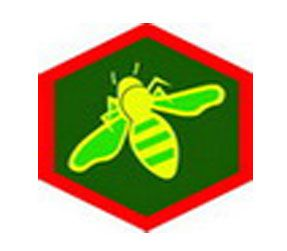 Η Άγρια Μέλισσα