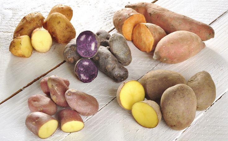 Steeds vaker wordt de aardappel op tafel ingeruild voor pasta, rijst, wraps, quinoa of couscous, maar het kan ook anders. Wist je dat er genoeg smakelijke knollen, wortels en kolen zijn die een perfect alternatief vormen voor de aardappel? En ook nog eens hartstikke gezond.