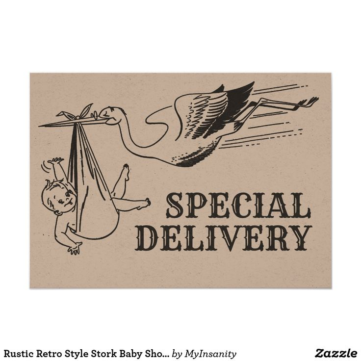 Rustic Retro Style Stork Baby Shower Invitation - This trendy invitation features retro illustrations of a stork and babies. All text on the front and on the back of the invitation can be customised.