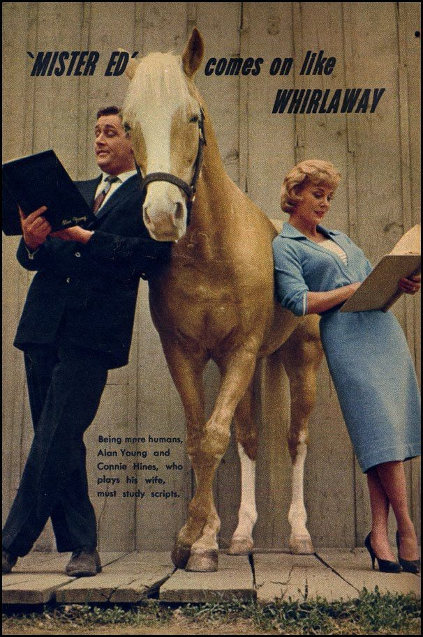 Classic Television Showbiz: Mister Ed (1962), portrayed by Bamboo Harvester.