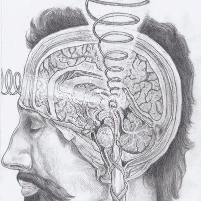 Pineal gland activation <3