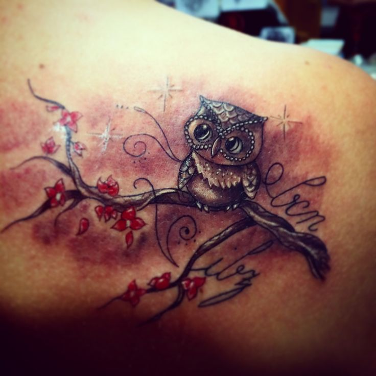 Curious owl on cherry blossoms - tattoo <33333333