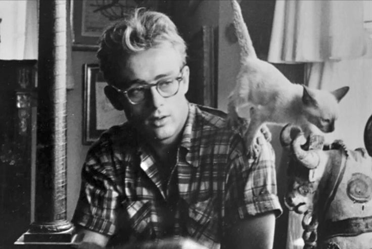 James Dean with his kitten Marcus, a gift from Elizabeth Taylor