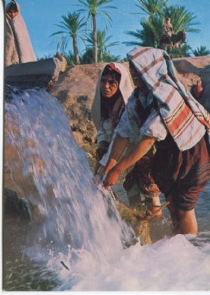 Societe Carthage Postcard, Sud Tunisien Bedouines a la sourrce, Bedouin at the spring, Rs2