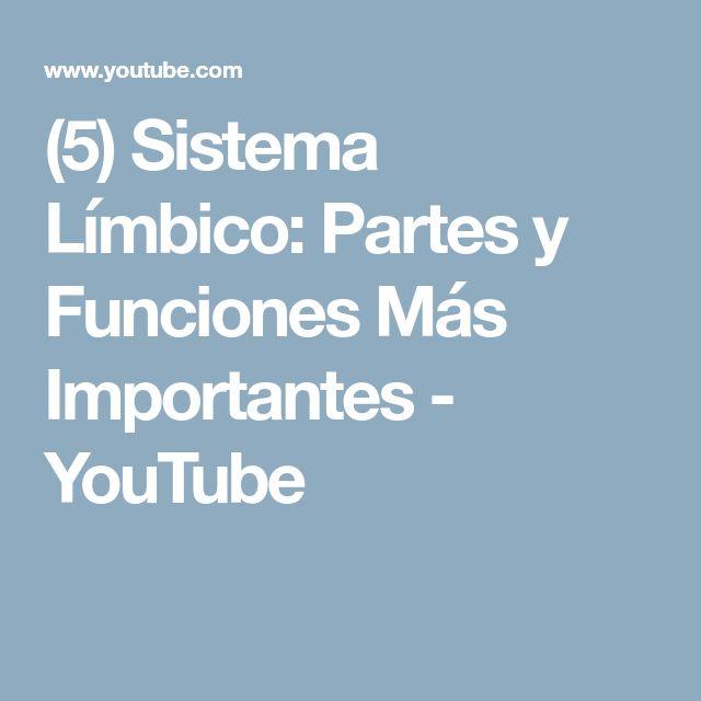 (5) Sistema Límbico: Partes y Funciones Más Importantes - YouTube