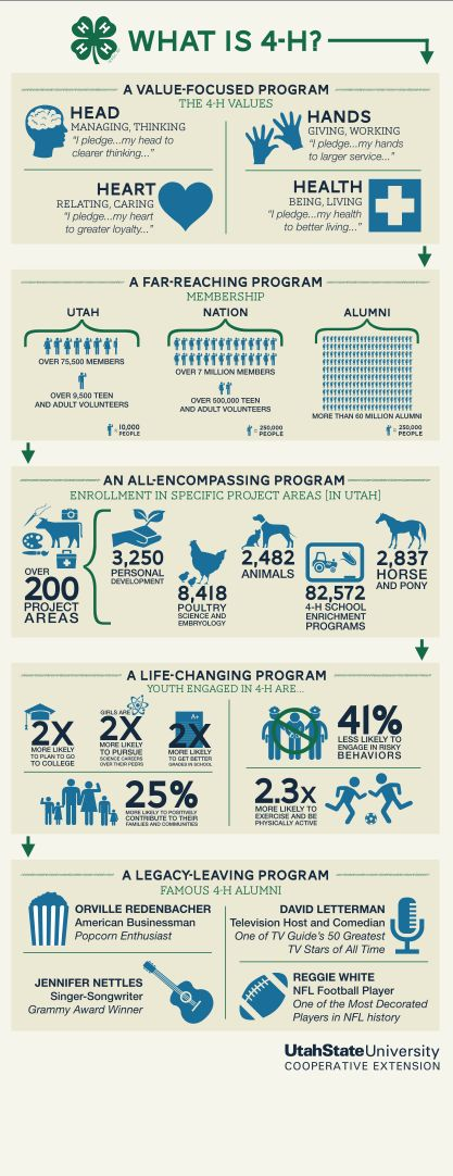 4-H Infographic Pull-Up Banner