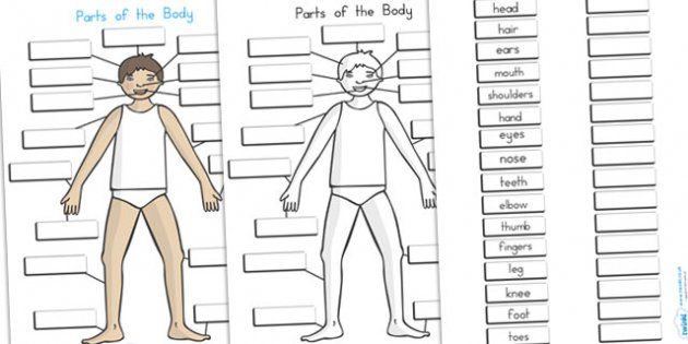 games to label parts of the body ks1 google search teaching ideas body parts in spanish. Black Bedroom Furniture Sets. Home Design Ideas