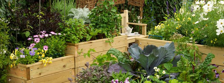 17 Best Images About Care Home Garden On Pinterest