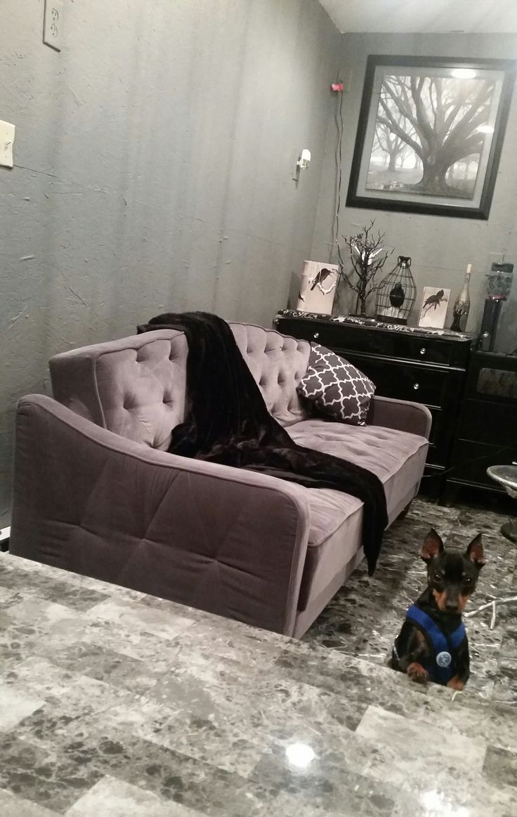 Pin By Emilio Acosta On Living Room Sleeper Sofa Tufted