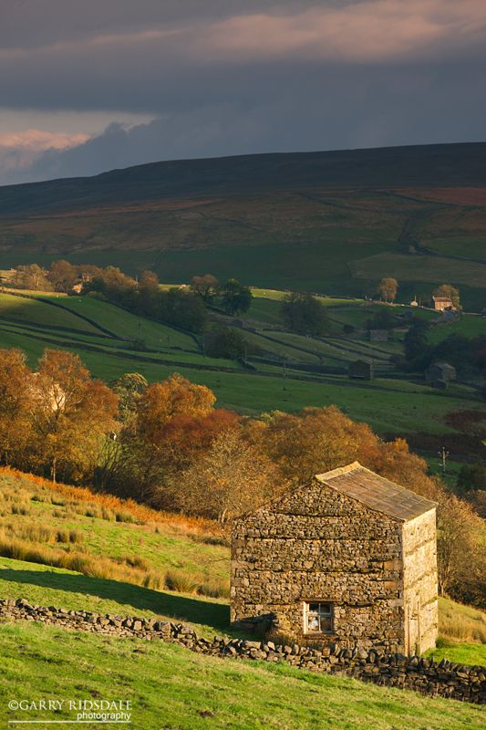 Yorkshire. Autumn colours starting to come through in the Upper Swaledale valley